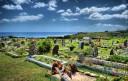 Cementerio (parcial)