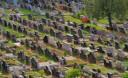 Cementerio no industrial